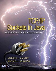 Example Socket Programming Exercises